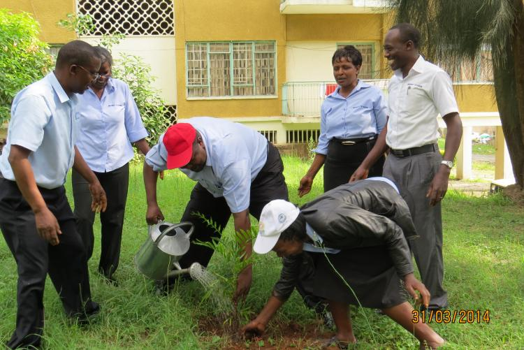 Mr. Sammy Karanja waters his tree seedling during a tree planting at Mamlaka Staff Houses