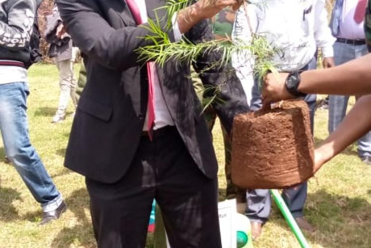 Prof. Kiama carrying a tree seedling to plant