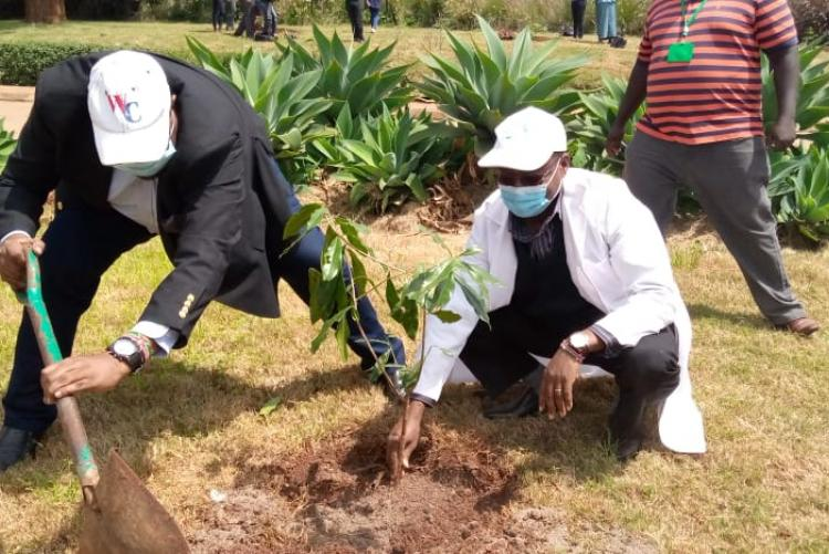 The Chief Internal Auditor Mr. Kenneth Gitau with Mr. Samuel Karanja an audit staff joins Management and Partners in Tree planting exercise in Mathai Intitute in College of Agriculture and Veterinary Sciences (CAVS) during